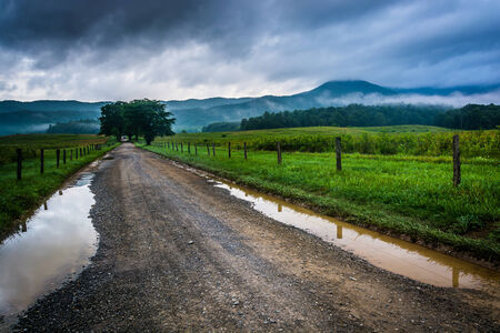 great smoky mountains: Puddles on a dirt road on a foggy morning at Cades Cove, Great Smoky Mountains National Park, Tennessee. Stock Photo