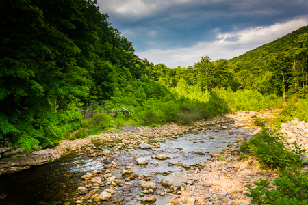 allegheny: Red Creek, in the rural Potomac Highlands of West Virginia.
