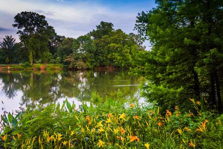 Flowers and trees along the shore of Lake Clara Meer at Piedmont Park, Atlanta, Georgia.