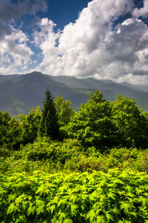 appalachian mountains: Mid-day view of the Appalachian Mountains from the Blue Ridge Parkway in North Carolina.