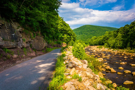 west virginia trees: Road along Red Creek, in the rural Potomac Highlands of West Virginia. Stock Photo