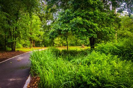 木とピードモント公園、アトランタ、ジョージア州のパスに沿って植物。