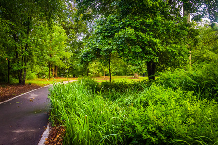 Trees and plants along a path in Piedmont Park, Atlanta, Georgia. 版權商用圖片 - 34594105