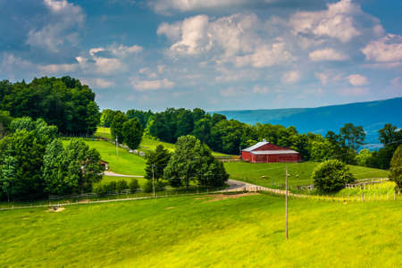 west virginia trees: View of a farm in the rural Potomac Highlands of West Virginia.