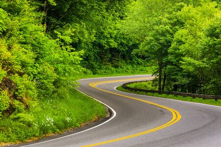 great smoky mountains: Curve on Newfound Gap Road at Great Smoky Mountains National Park, Tennessee. Stock Photo