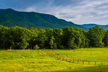 great smoky mountains national park: Field and mountains at Cades Cove, Great Smoky Mountains National Park, Tennessee.