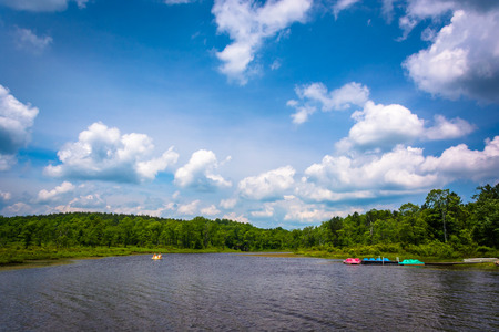 blackwater: Pendleton Lake, at Blackwater Falls State Park, West Virginia.