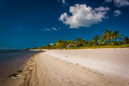 key of paradise: Smathers Beach, in Key West, Florida.