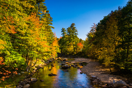 autumn color: Early autumn color along the Swift River in Conway, New Hampshire.