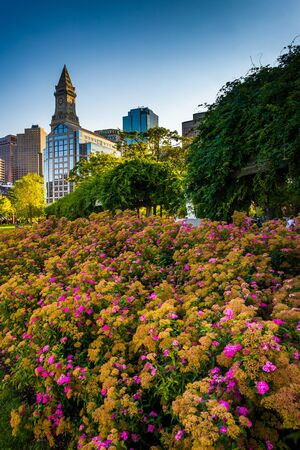 Flowers and the Custom House Tower in Boston, Massachusetts. photo