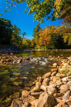 autumn color: Autumn color along the Saco River in Conway, New Hampshire. Stock Photo