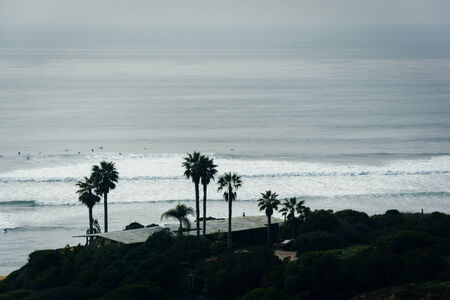 Palm trees and house on a cliff above the Pacific Ocean, seen from Sunset Cliffs Natural Park in Point Loma, California.