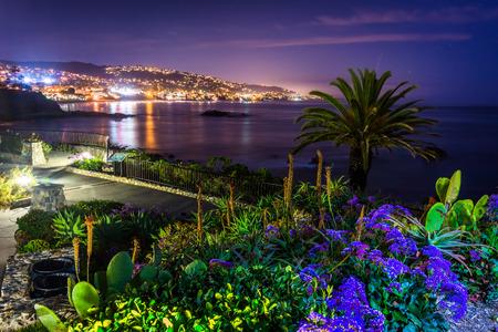 Bloemen en uitzicht op Laguna Beach 's nachts, van Heisler Park in Laguna Beach, Californië. Stockfoto