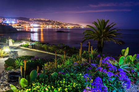 Flowers and view of Laguna Beach at night, from Heisler Park in Laguna Beach, California. Reklamní fotografie