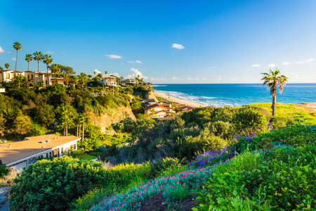 Flowers on a hill and view of houses and the Pacific Ocean in San Clemente, California.