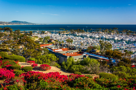 Flowers and view of the harbor from Heritage Park in Dana Point, California. Foto de archivo