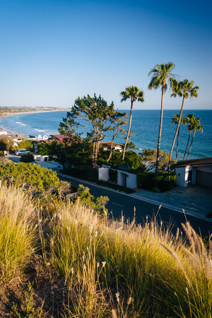 malibu: Grasses and view of houses along the Pacific Ocean, in Malibu, California.