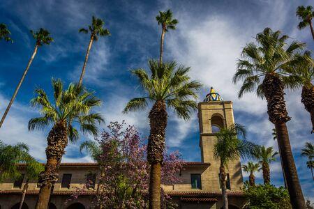 Palm trees and the Riverside Municipal Auditorium, in downtown Riverside, California. Redakční