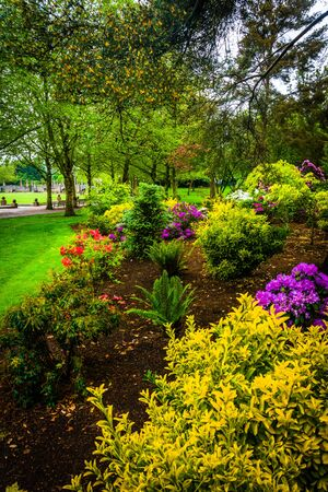 bellevue: Gardens at Downtown Park, in Bellevue, Washington.