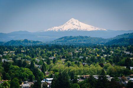 mount hood: View of Mount Hood from Mount Tabor, in Portland, Oregon.