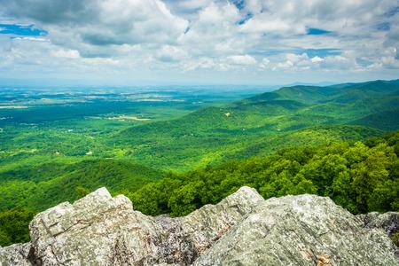 blue ridge: View of the Blue Ridge Mountains from Turk Mountain in Shenandoah National Park, Virginia.
