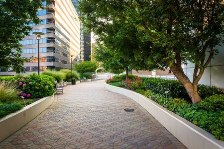 rosslyn: Gardens and modern buildings along a path at Freedom Park, in Rosslyn, Virginia.