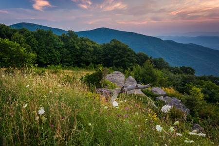 blue ridge: Sunset over the Blue Ridge Mountains, seen from Skyline Drive in Shenandoah National Park, Virginia. Stock Photo