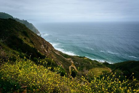 state of mood: Yellow flowers and view of the Pacific Ocean in Big Sur, California.