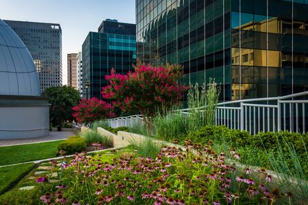 rosslyn: Garden and modern buildings at Freedom Park, in Rosslyn, Virginia. Stock Photo
