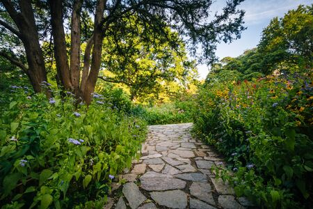 Path And Flowers At The Shakespeare Garden, In Central Park,.. Stock ...