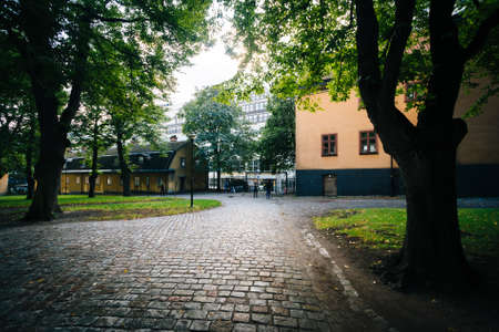 norrmalm: Walkway and trees outside The Church of Saint Clare (Klara Kyrka) in Norrmalm, Stockholm, Sweden.