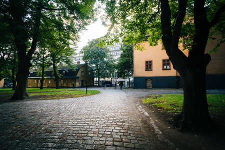 Walkway and trees outside The Church of Saint Clare (Klara Kyrka) in Norrmalm, Stockholm, Sweden.