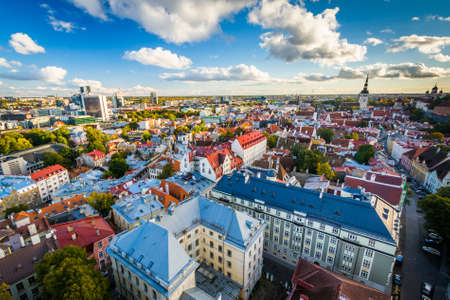 overlook: View of the Old Town from St. Olafs Church Tower, in Tallinn, Estonia.