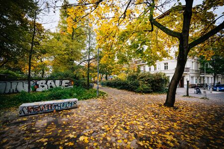 berg: Graffiti and autumn color at Helmholtzplatz, in Prenzlauer Berg, Berlin, Germany.