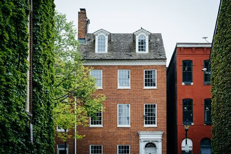 fells: Trees and historic houses in Fells Point, Baltimore, Maryland