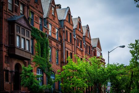 rowhouses: Rowhouses in Midtown-Belvedere, Baltimore, Maryland.