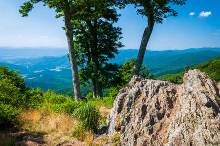 jewell: View of the Blue Ridge and Shenandoah Valley behind rocks and trees at Jewell Hollow Overlook, on Skyline Drive in Shenandoah National Park, Virginia.