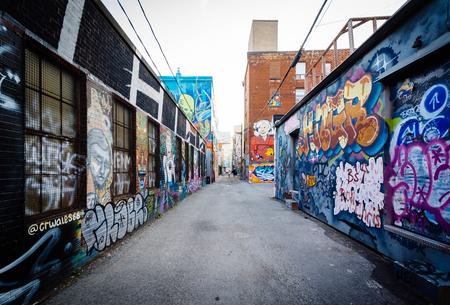 Street art in Graffiti Alley, nel Fashion District di Toronto, Ontario.