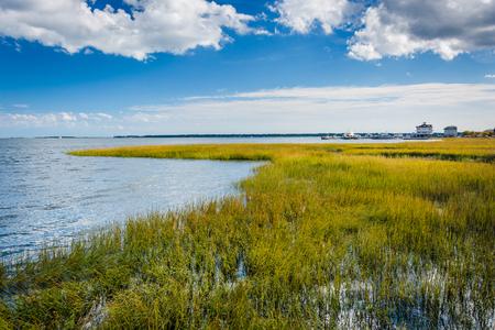 Marsh in Charleston, South Carolina.