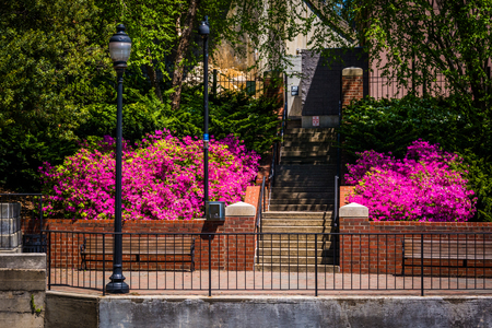 riverfront: Spring color along the Riverfront Canal Walk in Richmond, Virginia. Stock Photo