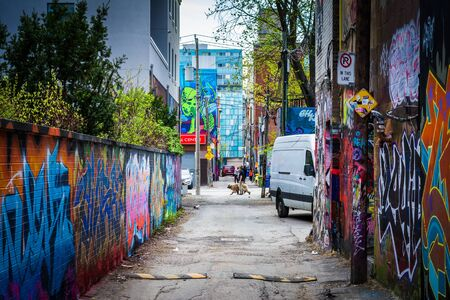 Colorful street art in Graffiti Alley, in the Fashion District of Toronto, Ontario. Editorial
