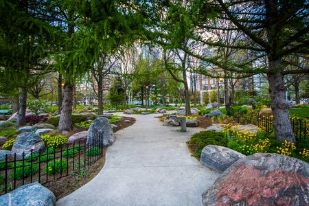 Trees And Gardens Along A Walkway At The Toronto Music Garden ...