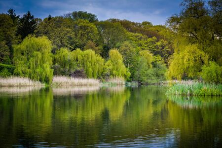 high park: The Grenadier Pond, at High Park, in Toronto, Ontario.