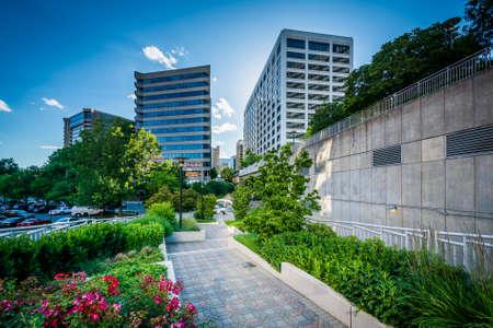 rosslyn: Gardens along a walkway and modern buildings in Rosslyn, Arlington, Virginia.