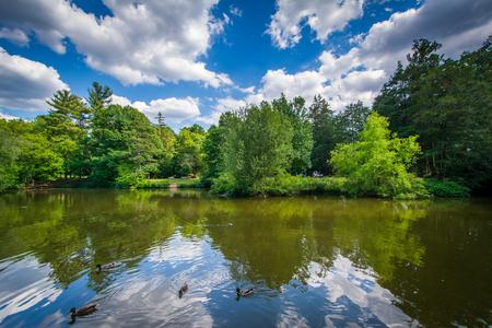 hartford: Pond at Elizabeth Park, in Hartford, Connecticut.