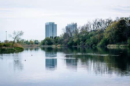 highrises: Condominium highrises and Grenadier Pond, at High Park, in Toronto, Ontario. Stock Photo