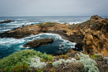carmel: View of a small cove at Point Lobos State Natural Reserve, in Carmel, California.