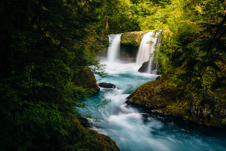 salmon falls: View of Spirit Falls on the Little White Salmon River in the Columbia River Gorge, Washington.