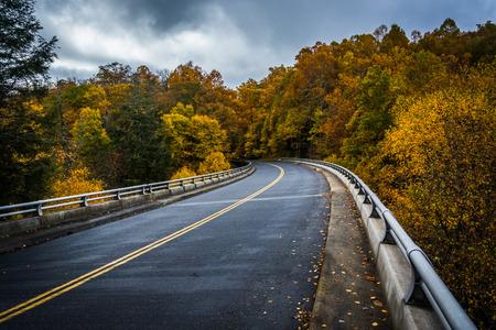 blue ridge: Autumn color and bridge on the Blue Ridge Parkway in North Carolina.