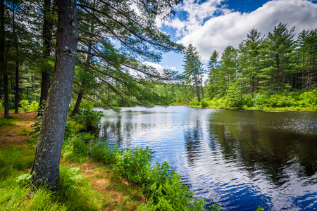 state park: Lake at Bear Brook State Park, New Hampshire. Stock Photo